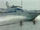 Кто виноват в том, что 25-летняя девушка погибла, попав под винт яхты на Пироговском водохранилище