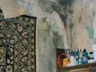 В программу «ЖКХ» обратилась Лилия Галеева, потерявшая здоровье из-за жизни в непригодной для жилья в квартире, но так и не получившая новой жилплощади