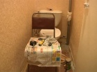 В программе «ЖКХ» - артист, телеведущий Михаил Грушевский помогает пенсионерке из Москвы добиться того, чтобы управляющая компания починила в ее доме канализацию