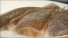 Количество глазури на поверхности замороженного филе рыбы не должно превышать 5%