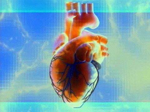 Здоровье - Холестерин. Жизнь или смерть? - Первый канал