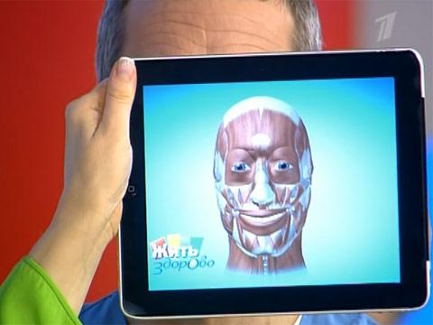 Лицевой нерв иннервирует мимику лица