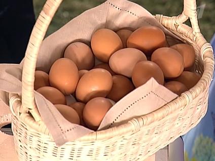 Секреты древних.  Куриные яйца - как средство по уходу за волосами.