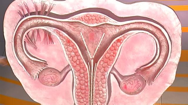 вариант возможна ли беременность без маточных труб естественным путем Размер
