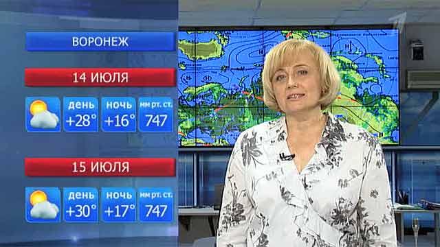 Погода в москве погода в петербурге
