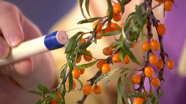 Приспособление для уборки листьев своими руками