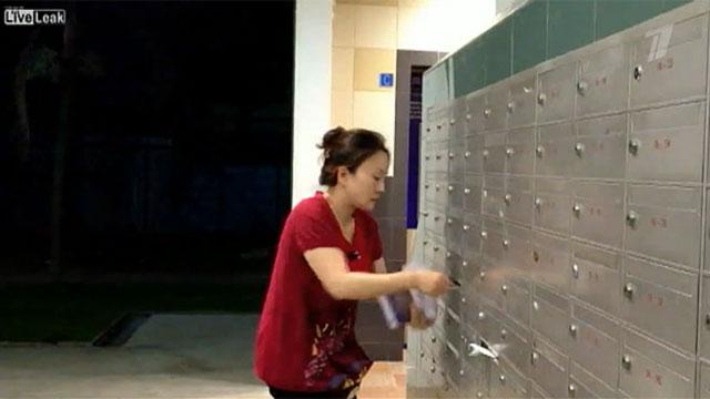 На звание самого ловкого почтальона планеты вполне может претендовать женщина из Сингапура