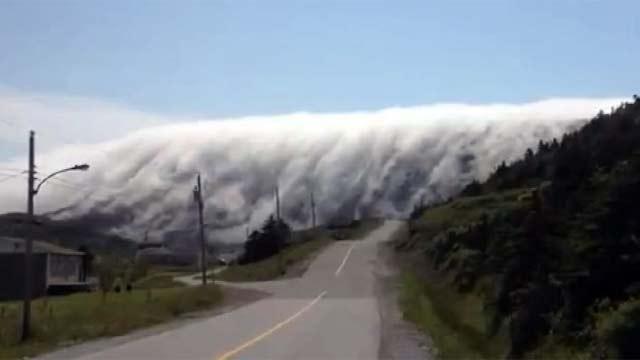 Туман в Ньюфаундленде