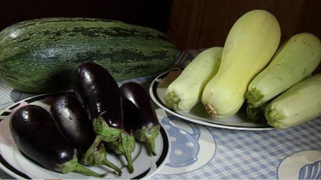 Баклажаны кабачки мультиварке рецепты фото