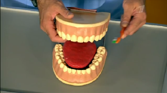Как очистить зубной протез от никотина в домашних условиях