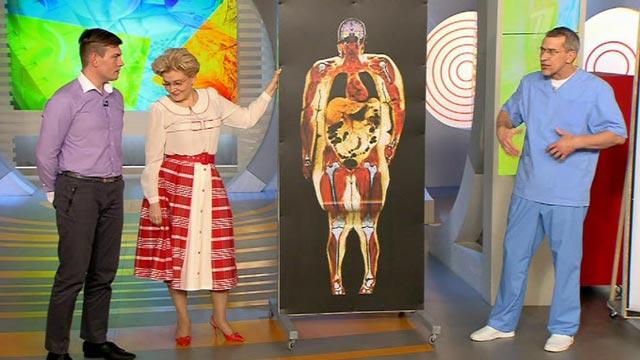 висцеральный жир на животе у женщин фото