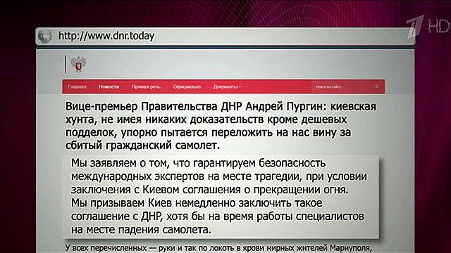 Правительство ДНР гарантирует безопасность международных экспертов на месте трагедии  (видео+)