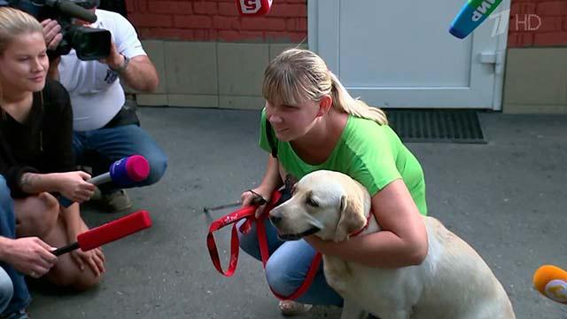 Следователи нашли украденную у москвички собаку
