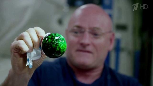Астронавты НАСА провели на орбите ряд красочных экспериментов с каплей воды